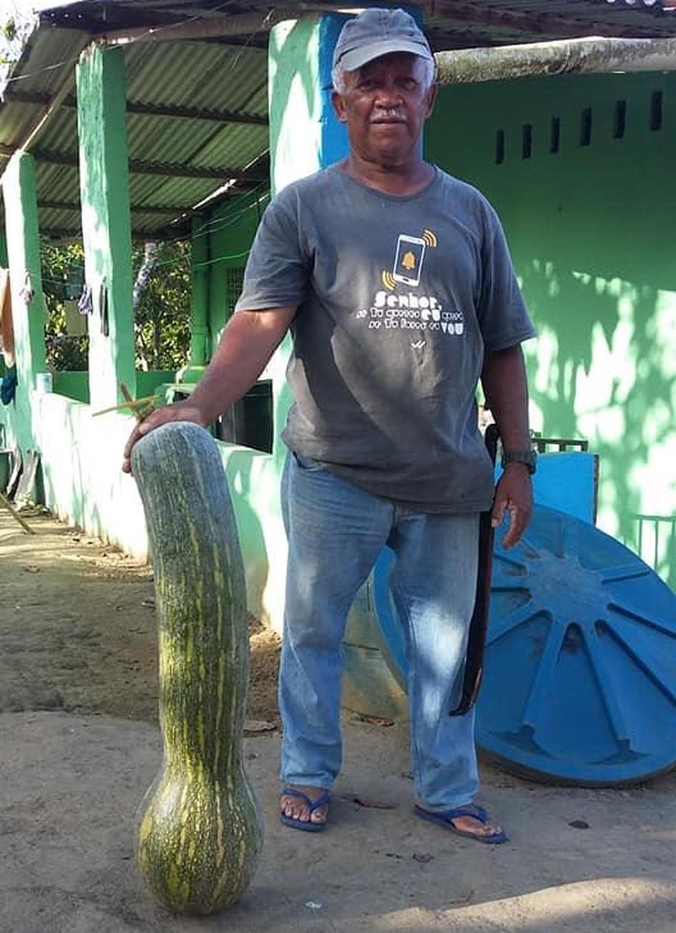 Colocada ao lado de seu Zé, a abóbora maior ultrapassa a altura da cintura do agricultor — Foto: Arquivo Pessoal