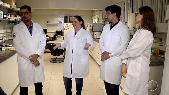 Pesquisas da UFRN descobrem potencial cosmético em plantas da caatinga
