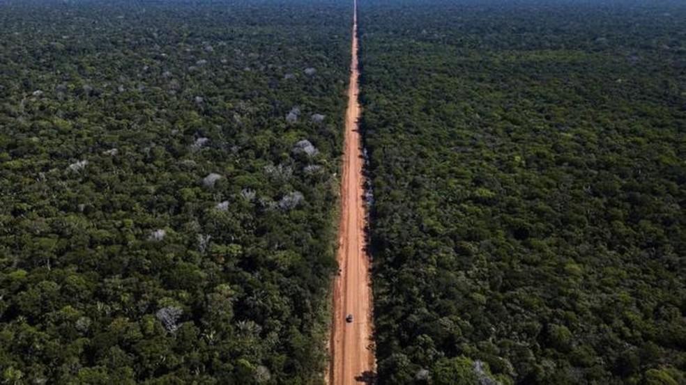 Estudos demonstram os efeitos prejudiciais da construção de rodovias para os ecossistemas cortados por elas — Foto: DNIT/Divulgação