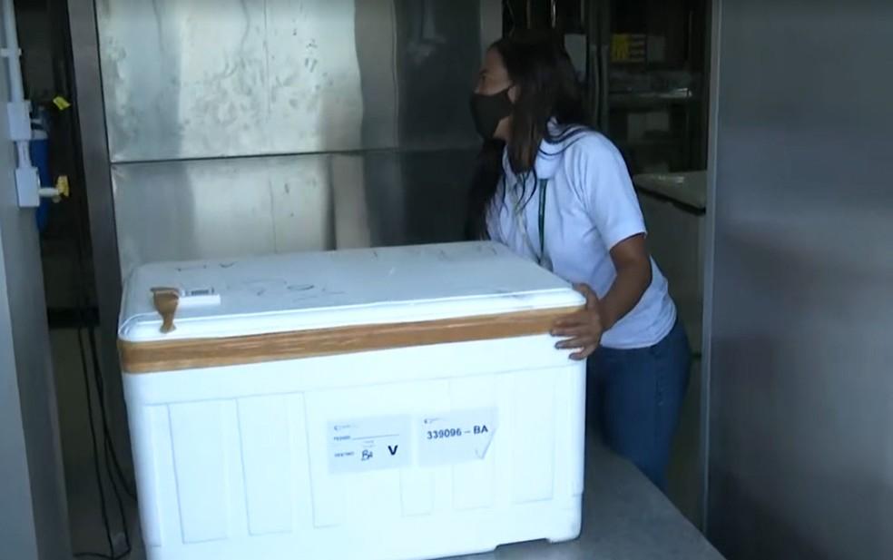 Vacinas enviadas para Feira serão distribuídas entre outras 22 cidades — Foto: Reprodução/TV Bahia