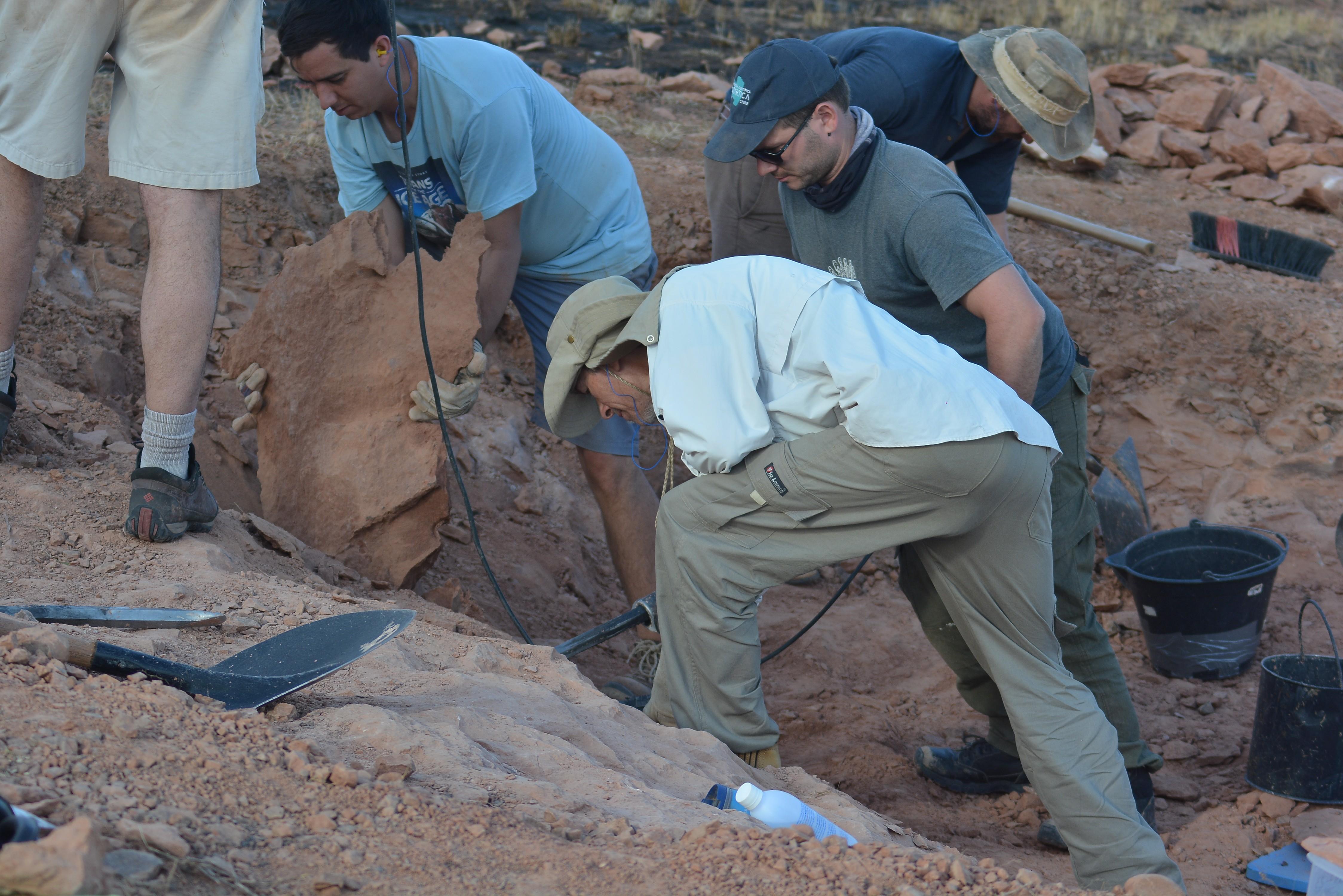 Seis meses após anúncio, trâmite de tombamento de sítio paleontológico continua na Prefeitura de Presidente Prudente - Notícias - Plantão Diário