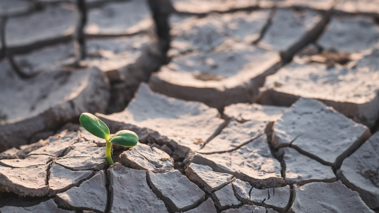 Mudanças climáticas_seca_aquecimento global_mundo (Foto: Getty Images)
