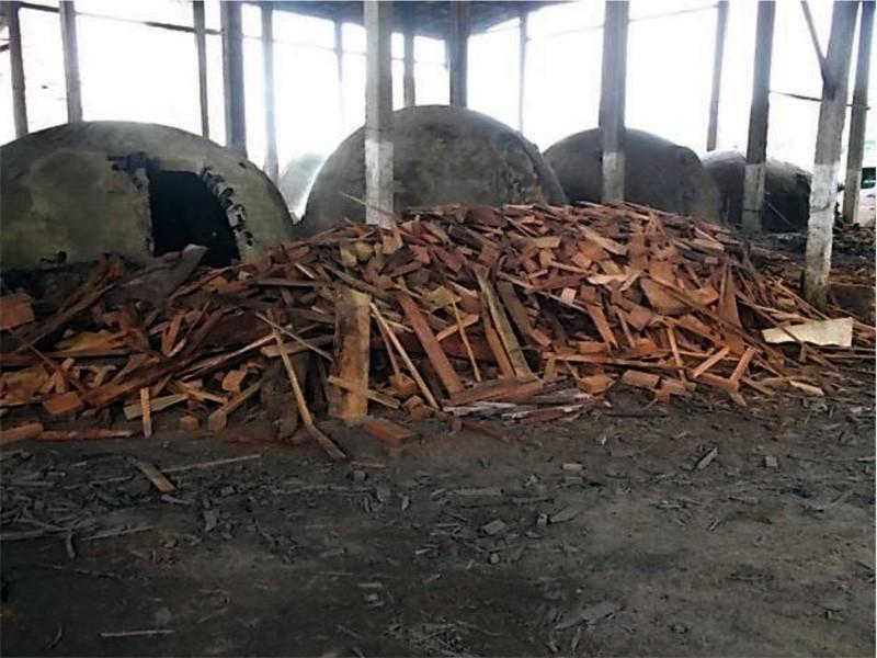 Empresa produtora de carvão vegetal é denunciada por prejuízos ao meio ambiente e à população, no PA - Notícias - Plantão Diário