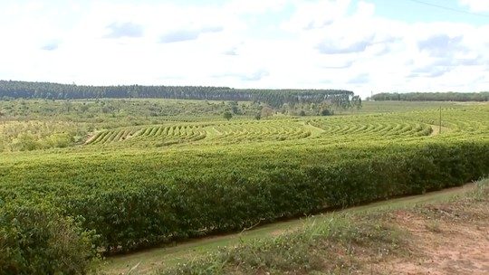 Chegada da primavera traz boa expectativa a produtores rurais