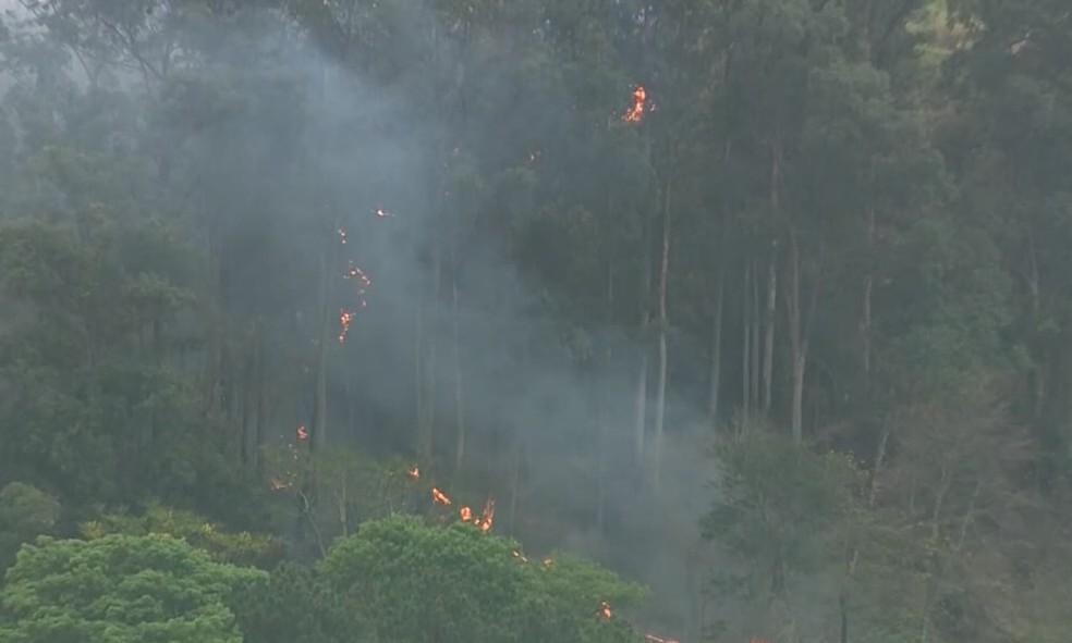 Característica geográfica dos locais dificultam combate a incêndio em São Pedro — Foto: Reprodução/ EPTV
