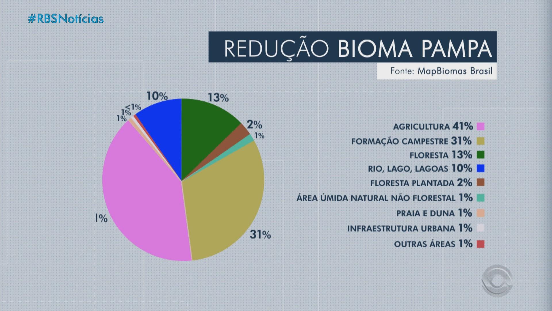 Estudo aponta que bioma pampa do RS perdeu 21% da vegetação nos últimos 34 anos