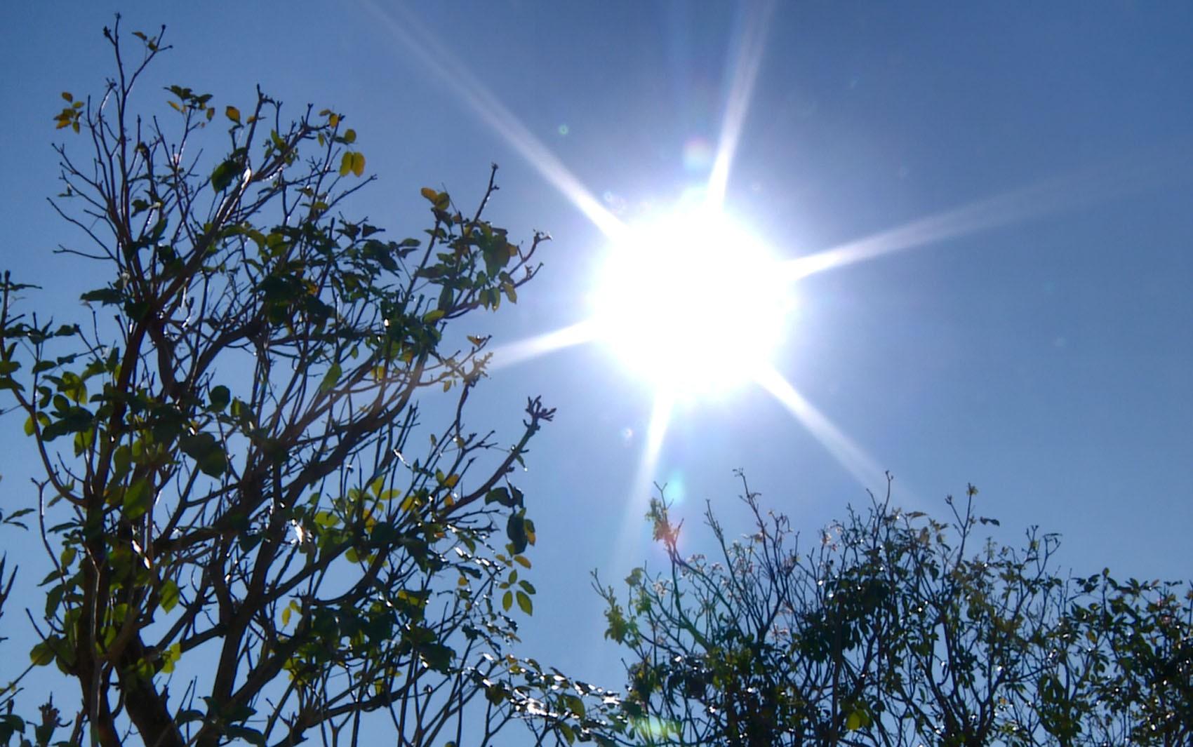 Campinas atinge recorde de calor com 38ºC e entra em estado de alerta após umidade do ar chegar a 13%