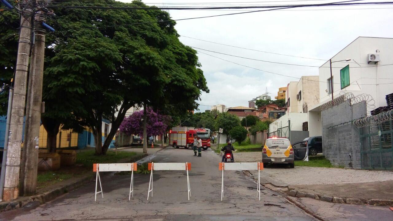 Prefeitura de BH orienta sobre pedido de poda de árvore durante a pandemia de Covid-19