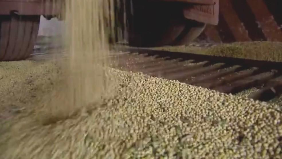 Saca de soja custa R$ 51,30 em Vilhena (Foto: Reprodução/TV Morena)