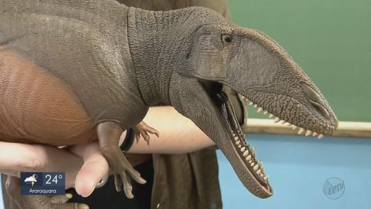 Grupo de paleontólogos da UFSCar e Unicamp cria brinquedo idêntico a dinossauro que viveu no Brasil