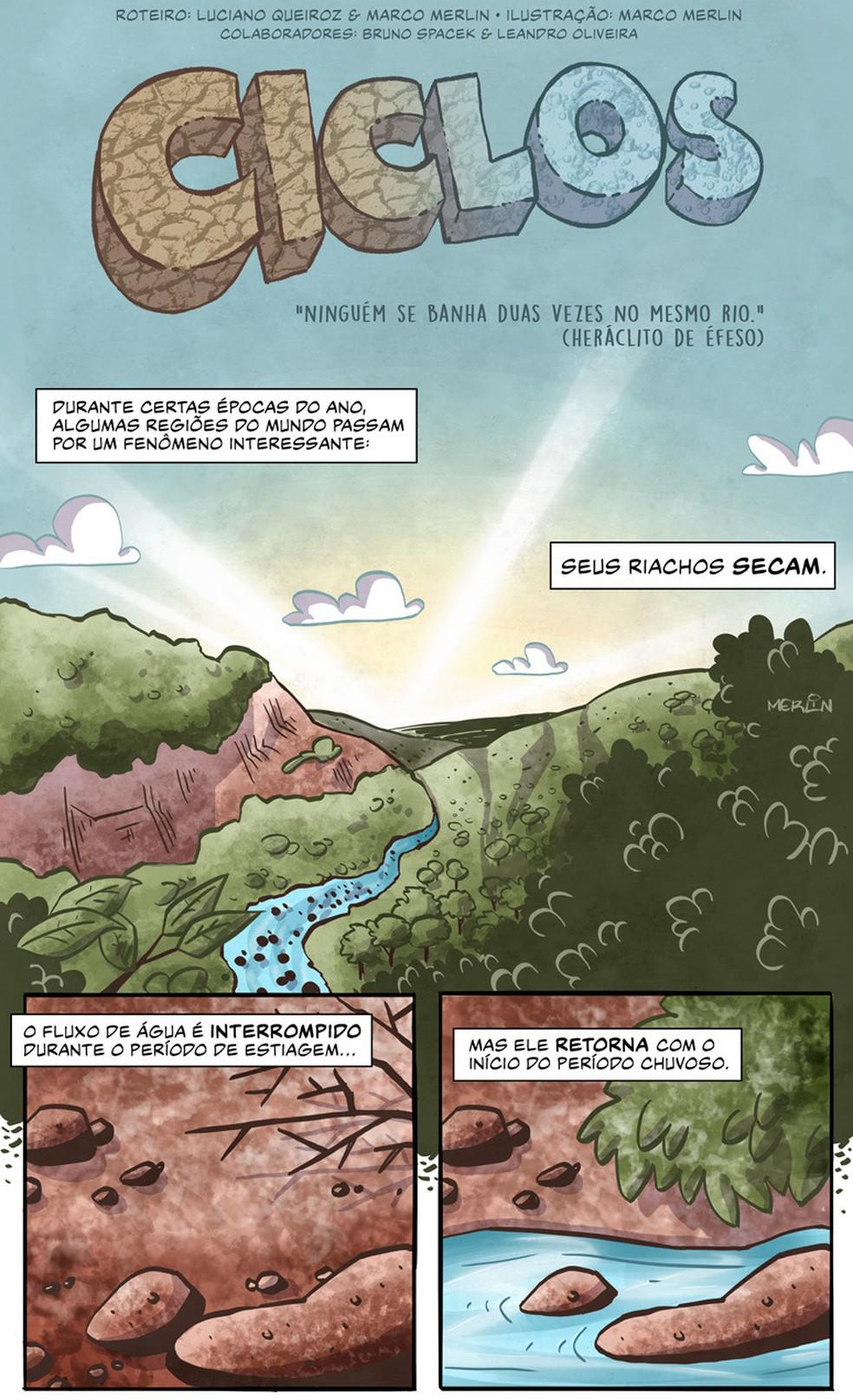 """""""Ciclos"""" - parte 1: história em quadrinhos ilustra e reconta os resultados de artigo científico sobre o ciclo de vida dos insetos — Foto: Divulgação/Luciano Queiroz e Marco Merlin"""