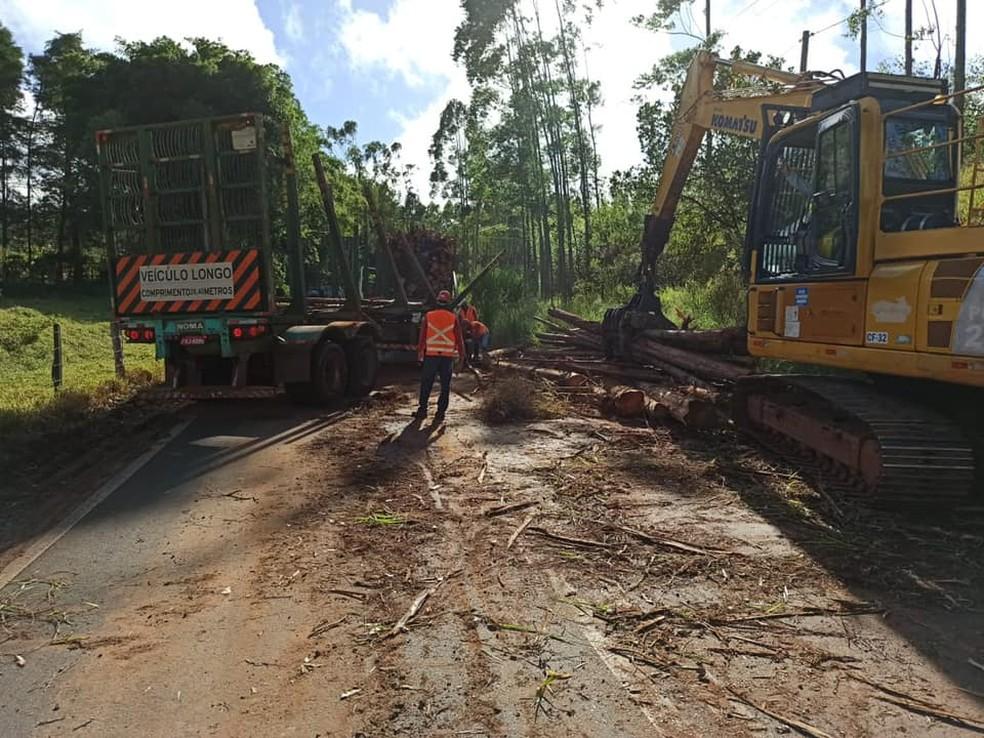 Equipes do Demutran trabalharam na limpeza da vicinal após acidente em Itatinga — Foto: Demutran Itatinga/Divulgação