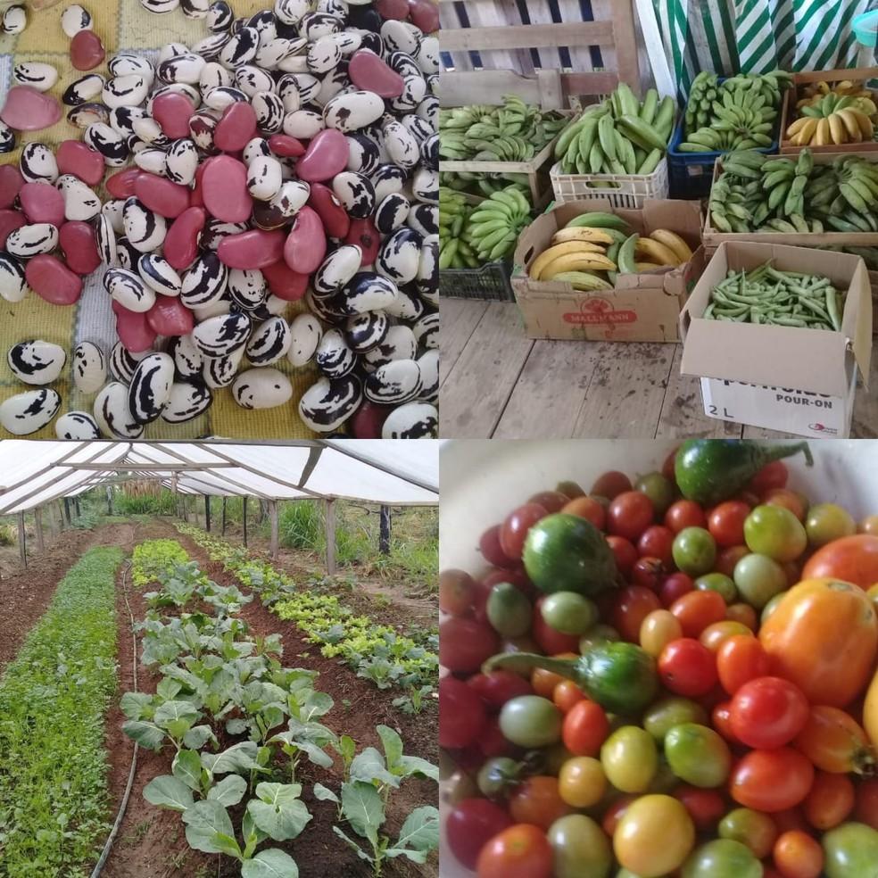 Produtos são cultivados em projetos de assentamento no Acre — Foto: Arquivo pessoal