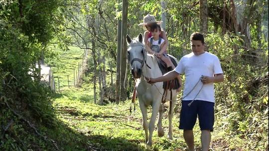 Produtores de Santa Catarina aumentam a renda com turismo rural
