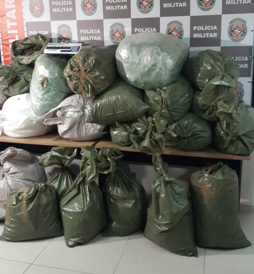 Mais de 200 quilos de maconha foram apreendidos em João Pessoa — Foto: Polícia Militar da Paraíba/Divulgação