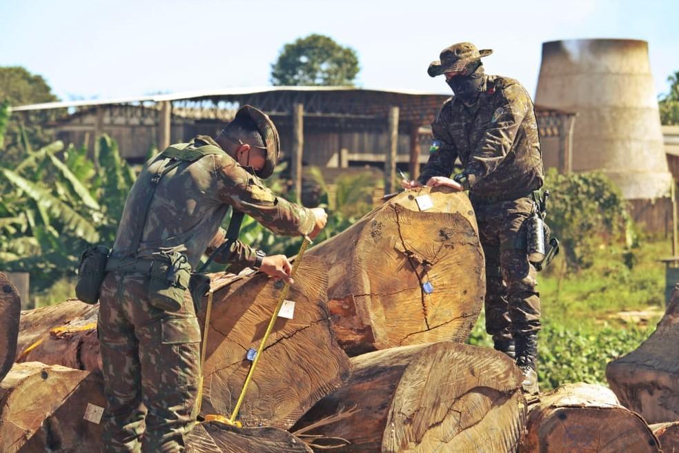 Essa foi mais uma fase da Operação Verde Brasil 2, que combate crimes ambientais.  — Foto: Divulgação/Exército Brasileiro