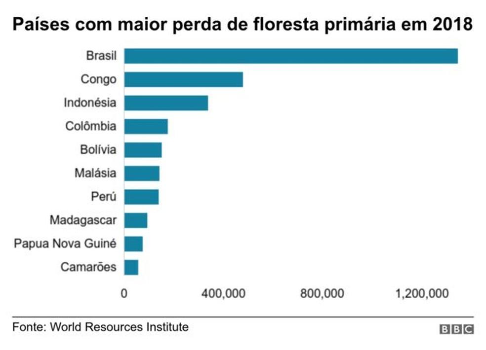 Brasil liderou desmatamento de florestas primárias no mundo em 2018, mostra relatório — Foto: BBC