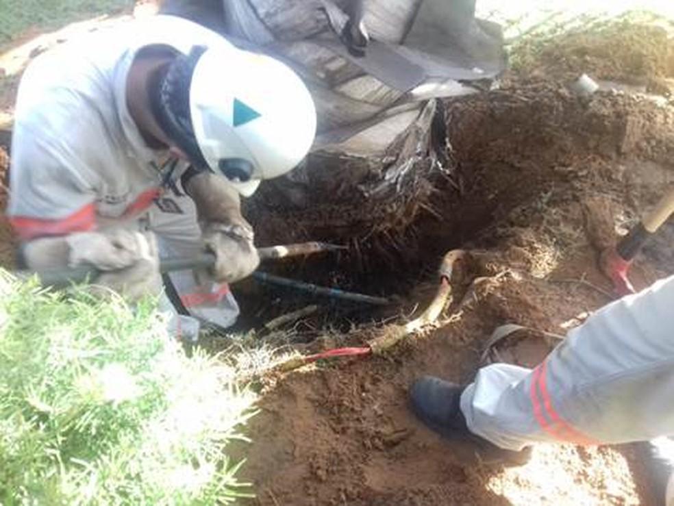 Funcionários da concessionária de energia encontraram gato de energia enterrado — Foto: Energisa/Divulgação