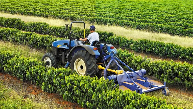 agricultura_maquinas_trator_frutas_new_holland (Foto: Divulgação/New Holland)