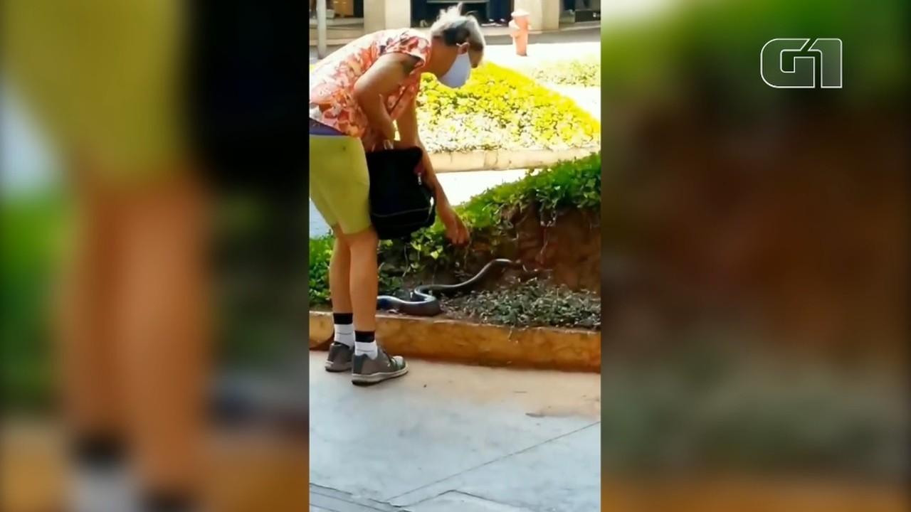 Mulher leva cobra para passear no Centro de BH e vídeo viraliza nas redes sociais