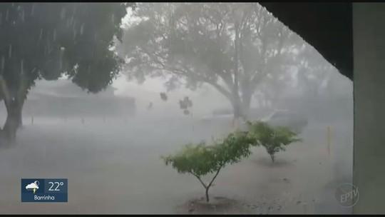 Chuva e vento fortes assustam moradores em São Simão, SP