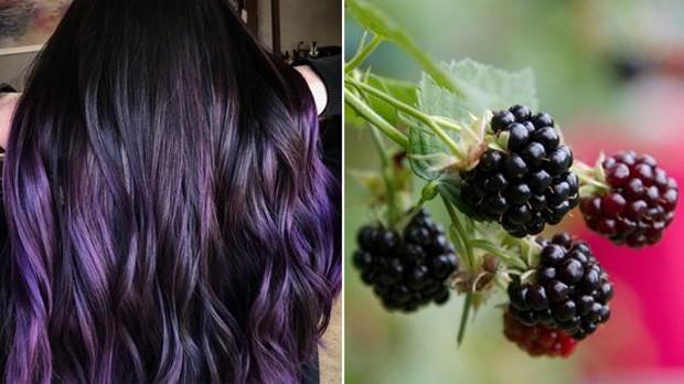 Resultado de imagem para cabelo blackberry