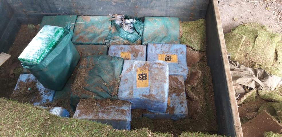 Caminhoneiro é preso com meia tonelada de cocaína em rodovia baiana; droga foi encontrada por cão farejador — Foto: Divulgação/SSP-BA