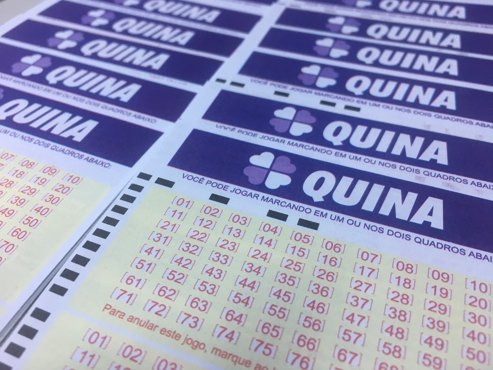 Quina, Loteria (Foto: Stephanie Fonseca/G1)