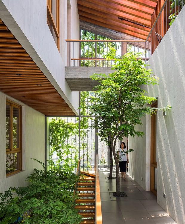 O verde está presente entre as escadas da propriedade (Foto: Hiroyuki Oki/ Dezeen/ Reprodução)