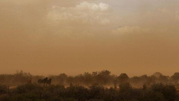 Viver uma tempestade de poeira na infância levou Peter Andrews a lidar com a agricultura de uma maneira diferente na infância (Foto: Getty Images)