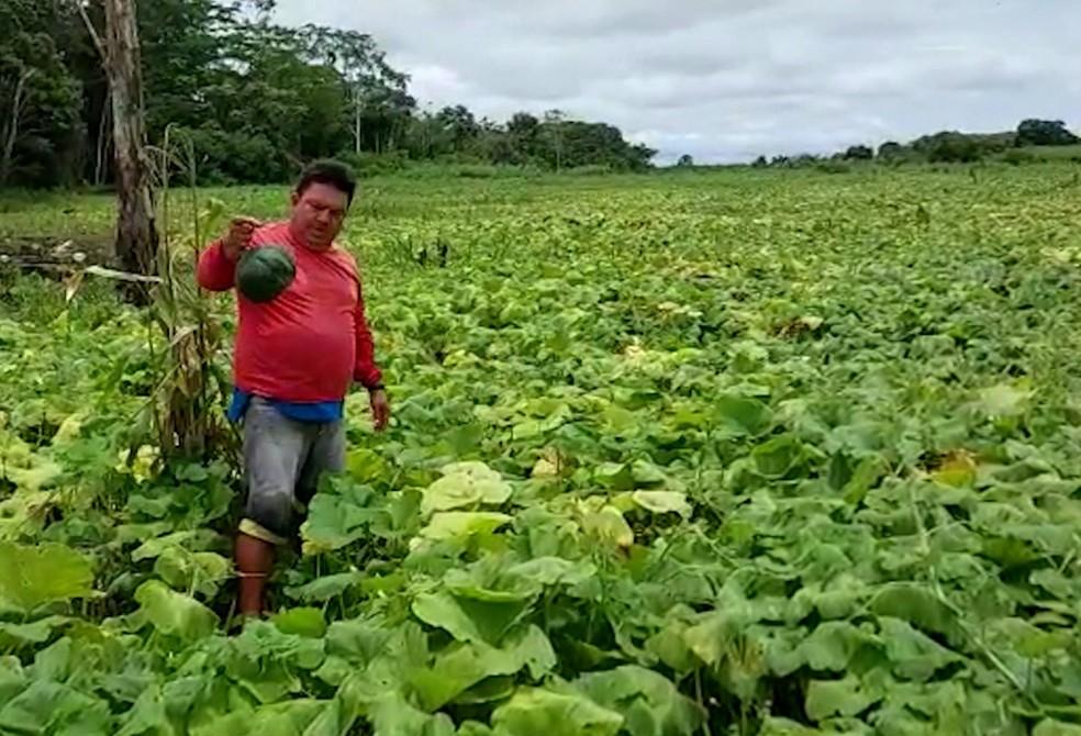 Agricultor no interior do Amazonas lamentou ter perdido toda produção rural devido a cheia dos rios. — Foto: Reprodução/Rede Amazônica