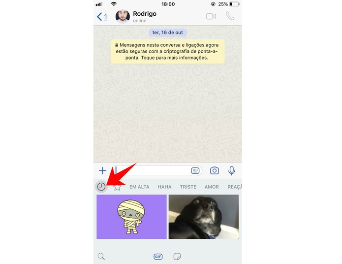 WhatsApp mostra os GIFs utilizados recentemente nas conversas (Foto: Reprodução/Rodrigo Fernandes)