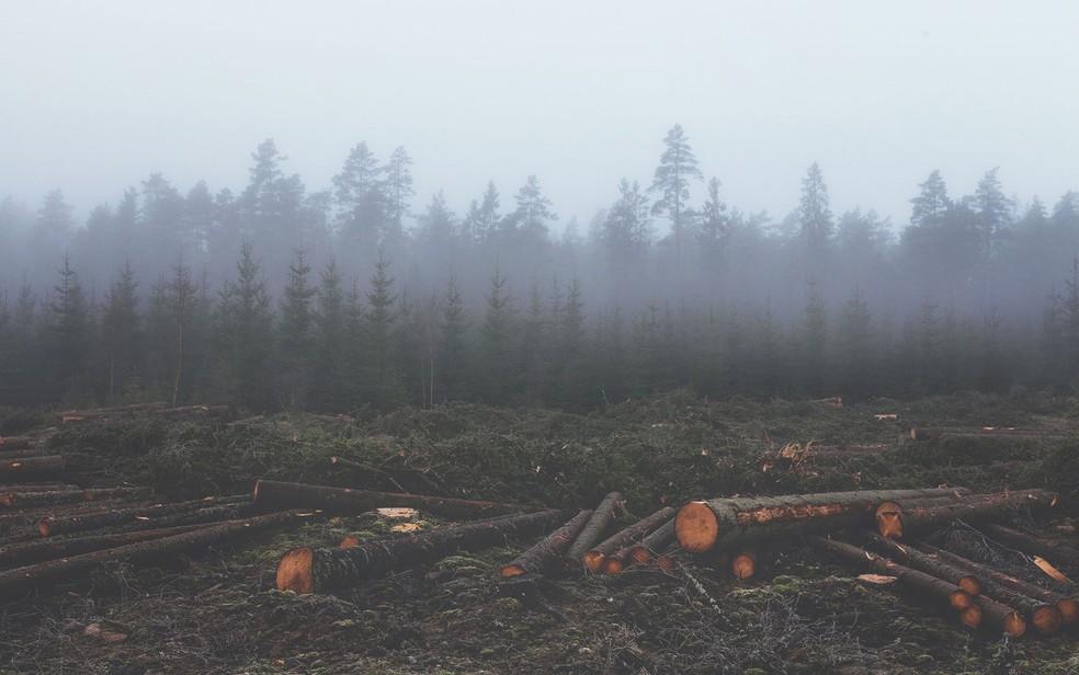 Total dos recursos que o planeta pode renovar em um ano já foi consumido (Foto: Pixabay)