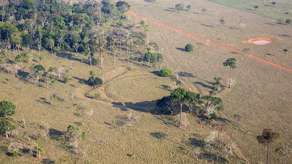 Calcula-se que o Brasil tenha 500 geoglifos - ironicamente, por causa do desmatamento, mais figuras estão sendo descobertas — Foto: Oscar Liberal/ IPHAN/Divulgação