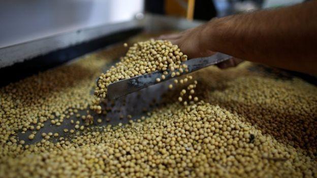 Soja e subprodutos, como bagaços e outros resíduos sólidos, da extração do óleo, estão entre os que o Brasil exporta para UE (Foto: Reuters via BBC)
