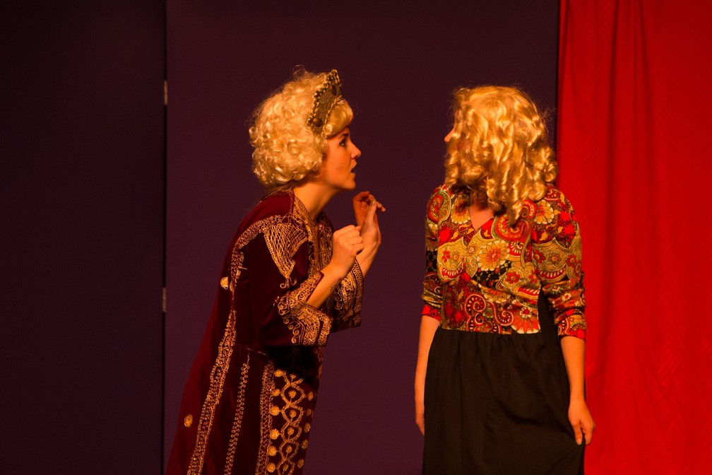 O espetáculo mescla quatro tragédias (Otelo, Romeu e Julieta, Macbeth e Hamlet) e uma comédia (A Megera Domada) (Foto: Divulgação)