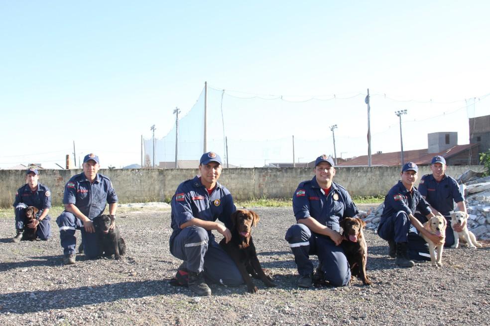 Bombeiros passam por treinamento para serem tutores dos animais — Foto: Corpo de Bombeiros Militar de Santa Catarina