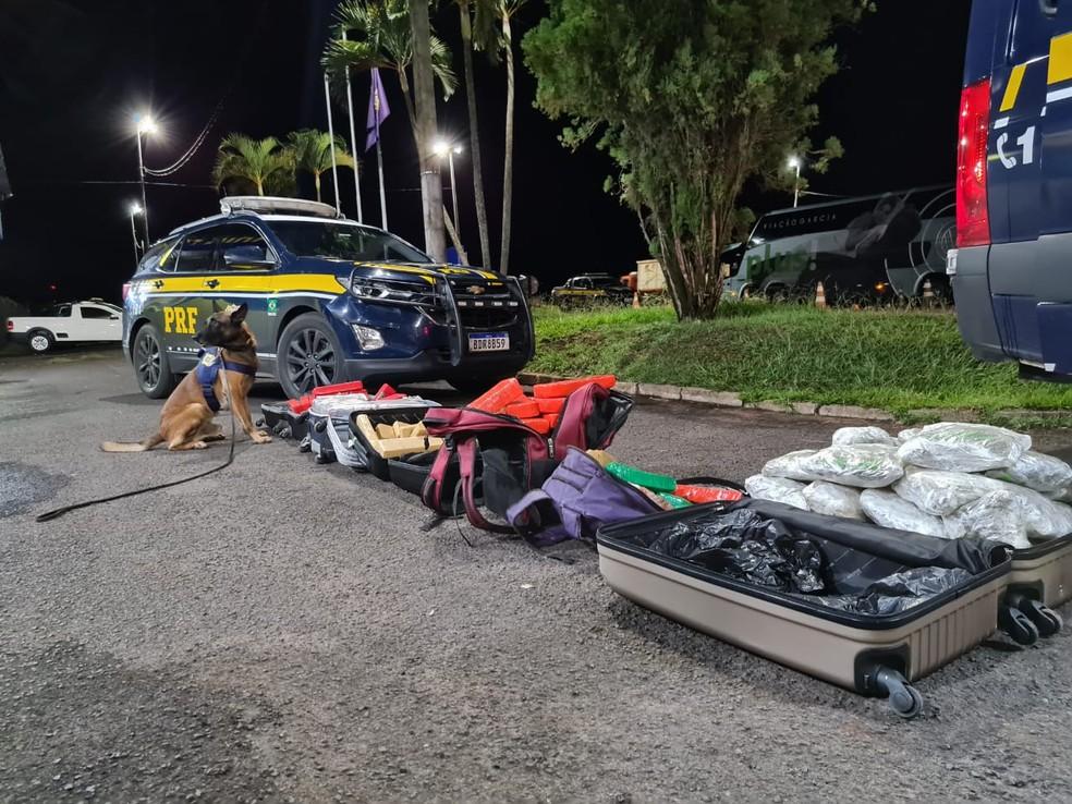 Foram encontrados maconha, skunk e haxixe em malas e sacolas em ônibus em Ourinhos (SP) nesta quarta-feira (10) — Foto: Polícia Rodoviária Federal/ Divulgação