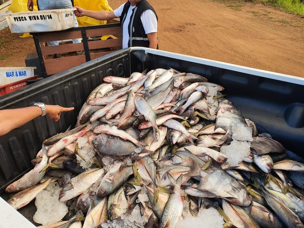 Peixe estragado é apreendido na Bahia — Foto: Polícia Rodoviária Federal