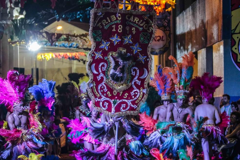 Tribo Carijós foi homenageada no carnaval do Recife em 2017 — Foto: Clélio Tomaz/Divulgação
