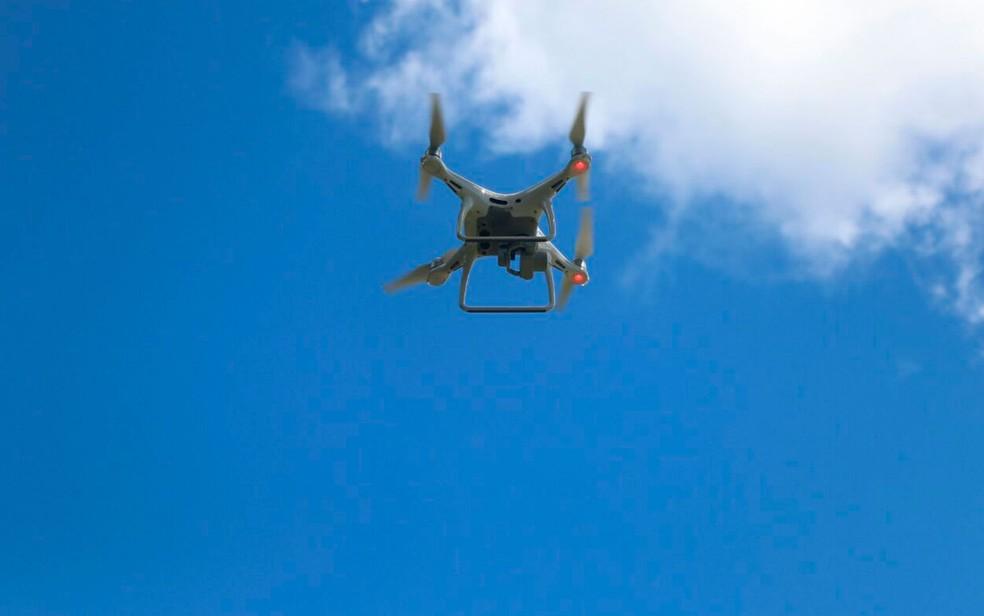 Drone  ajudou na localização da plantação em Esplanada, na Bahia (Foto: Alberto Maraux / SSP-BA)