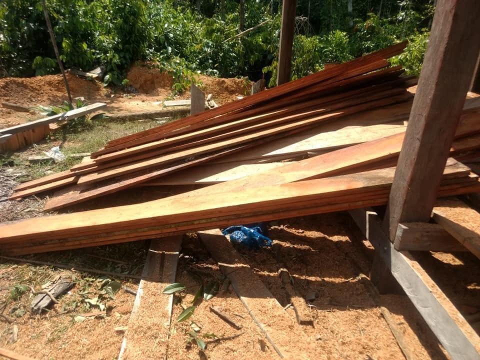 Extração ilegal de madeira e minério é encontrada em área de desmatamento na AM-010