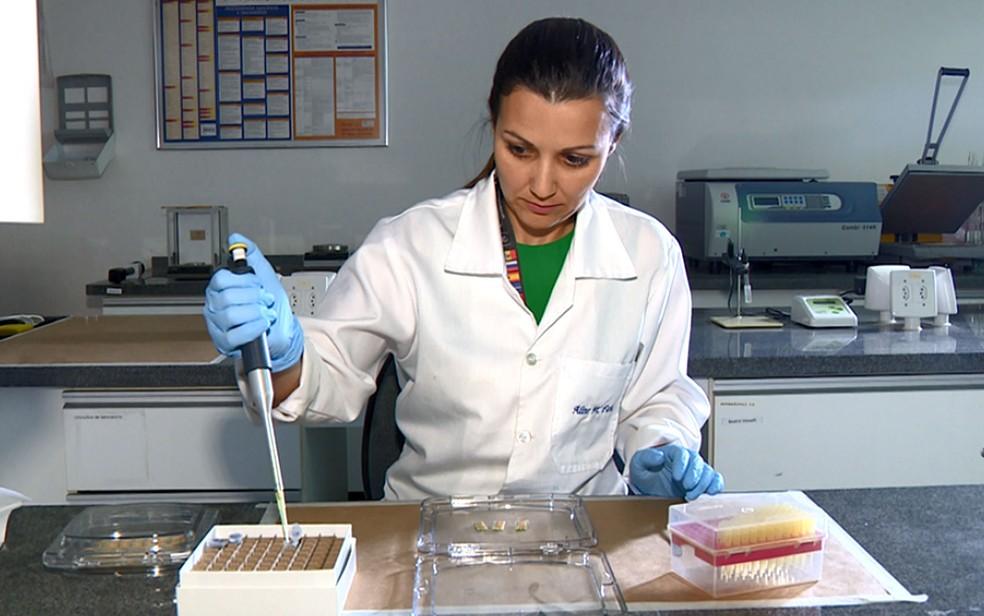 Aline Macedo Faria, pesquisadora do CTI Renato Archer em Campinas. — Foto: Toni Mendes/EPTV