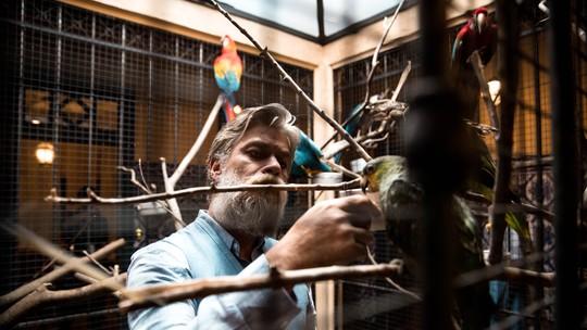Fábio Assunção analisa relação de Ramiro com as aves: 'Só demonstra afeto para elas'