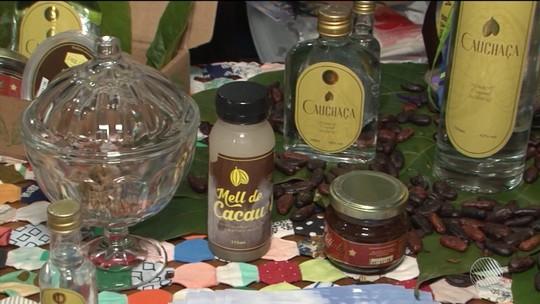 Décima edição do Festival do Chocolate e Cacau é realizada em Ilhéus até domingo (22)