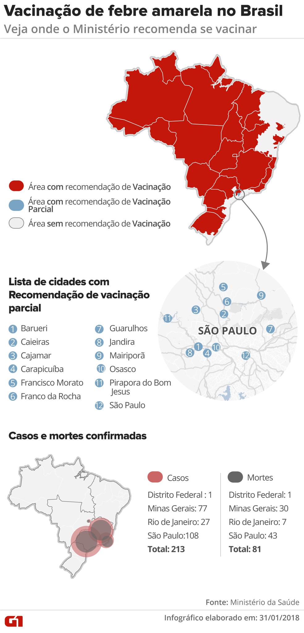 Áreas com recomendação para a vacina da febre amarela (Foto: Infográfico: Juliane Monteiro/G1)