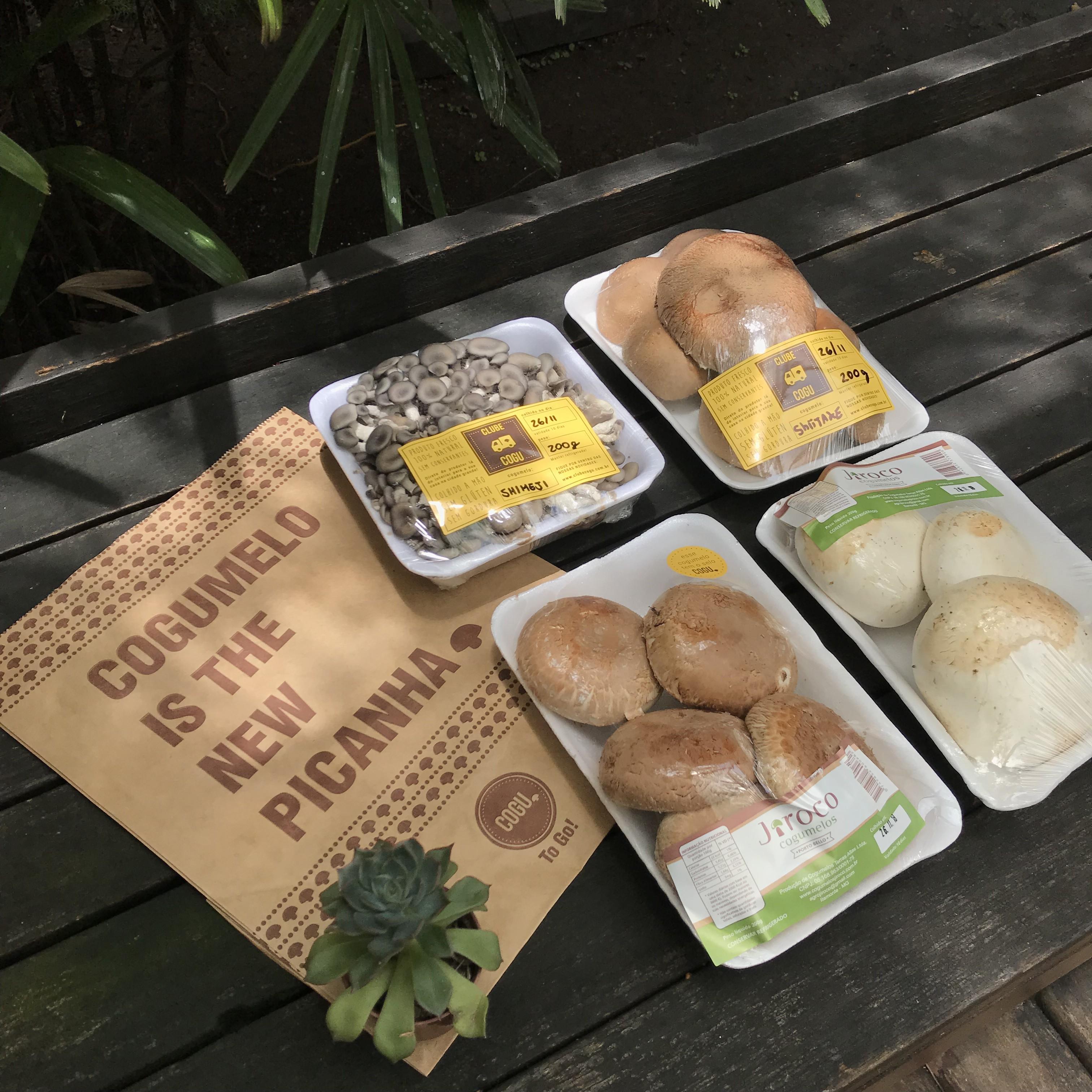 Cogu: cogumelos saudáveis e agroecológicos