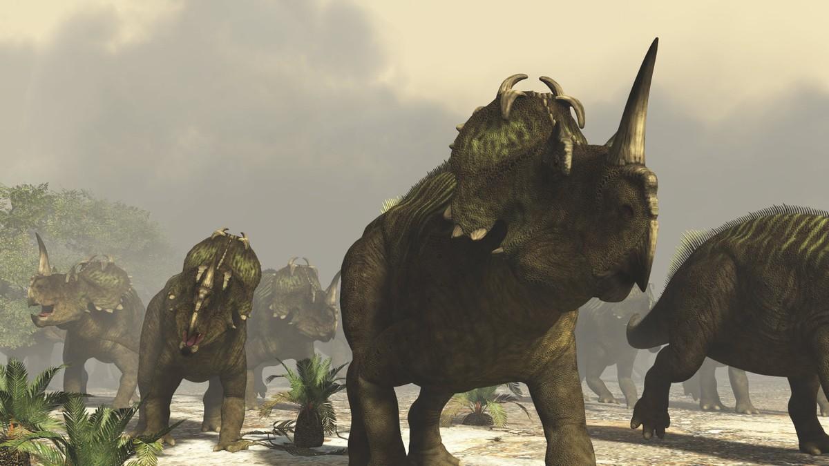 Câncer é descoberto em um dinossauro pela primeira vez – G1