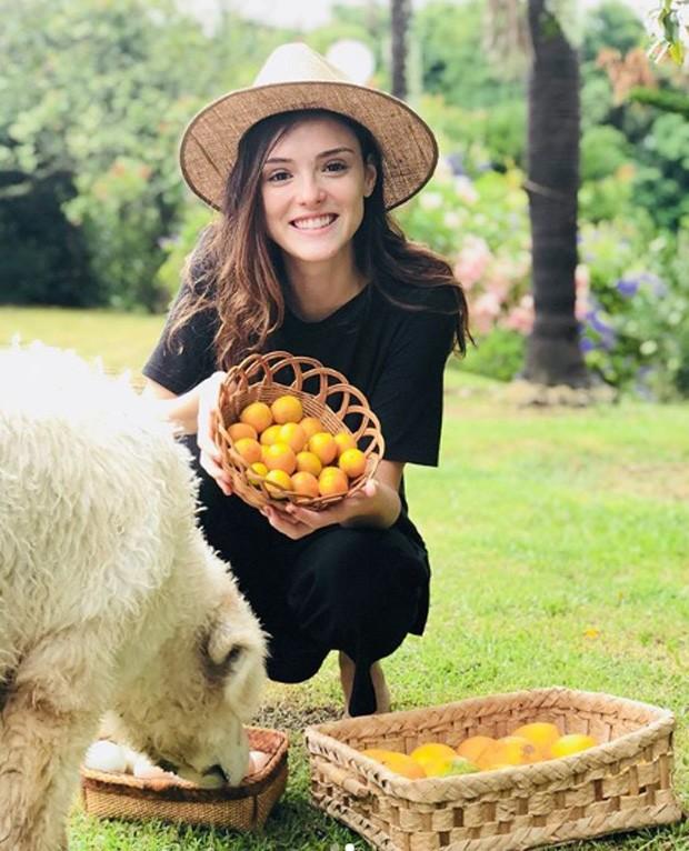 18 famosos veganos (Foto: Instagram)