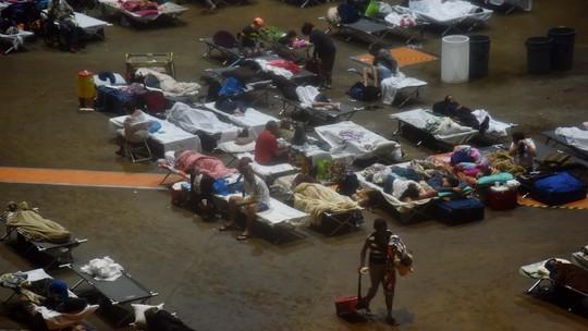 Foto: (Hector Retamal/AFP)